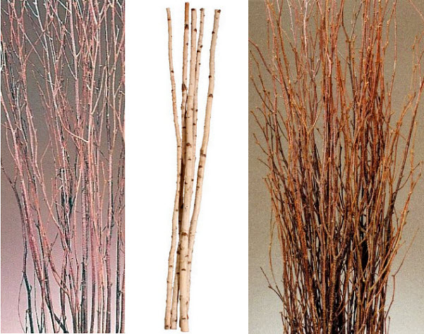 decorative-dried-birch-tree-branches