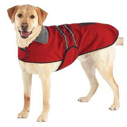 Dog-rain-jackets