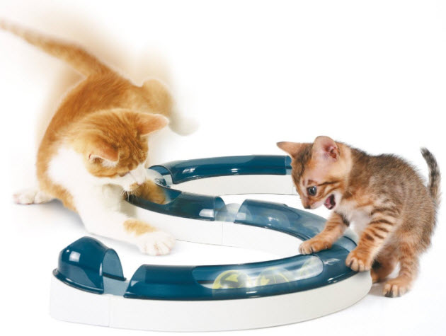interactive-cat-toy
