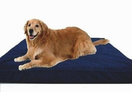 large-breed-dog-bed
