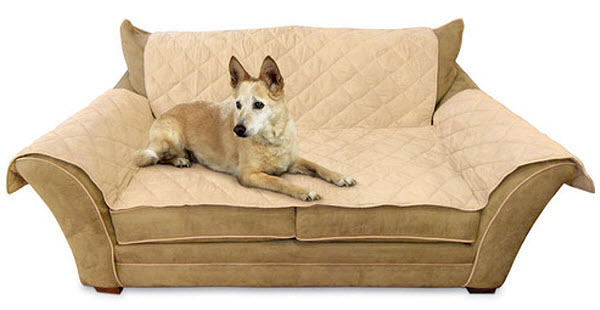 pet-couch-throw-cover