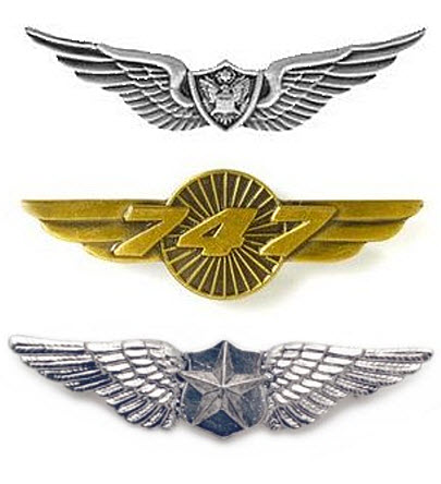 pilot-wings-pin