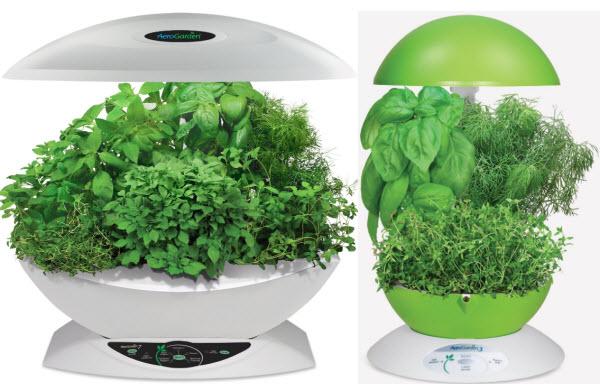 small-indoor-herb-grower