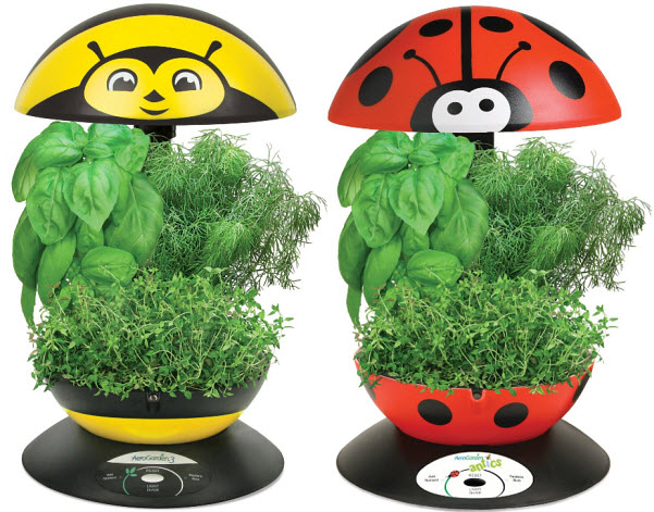 indoor-herb-growing-kits